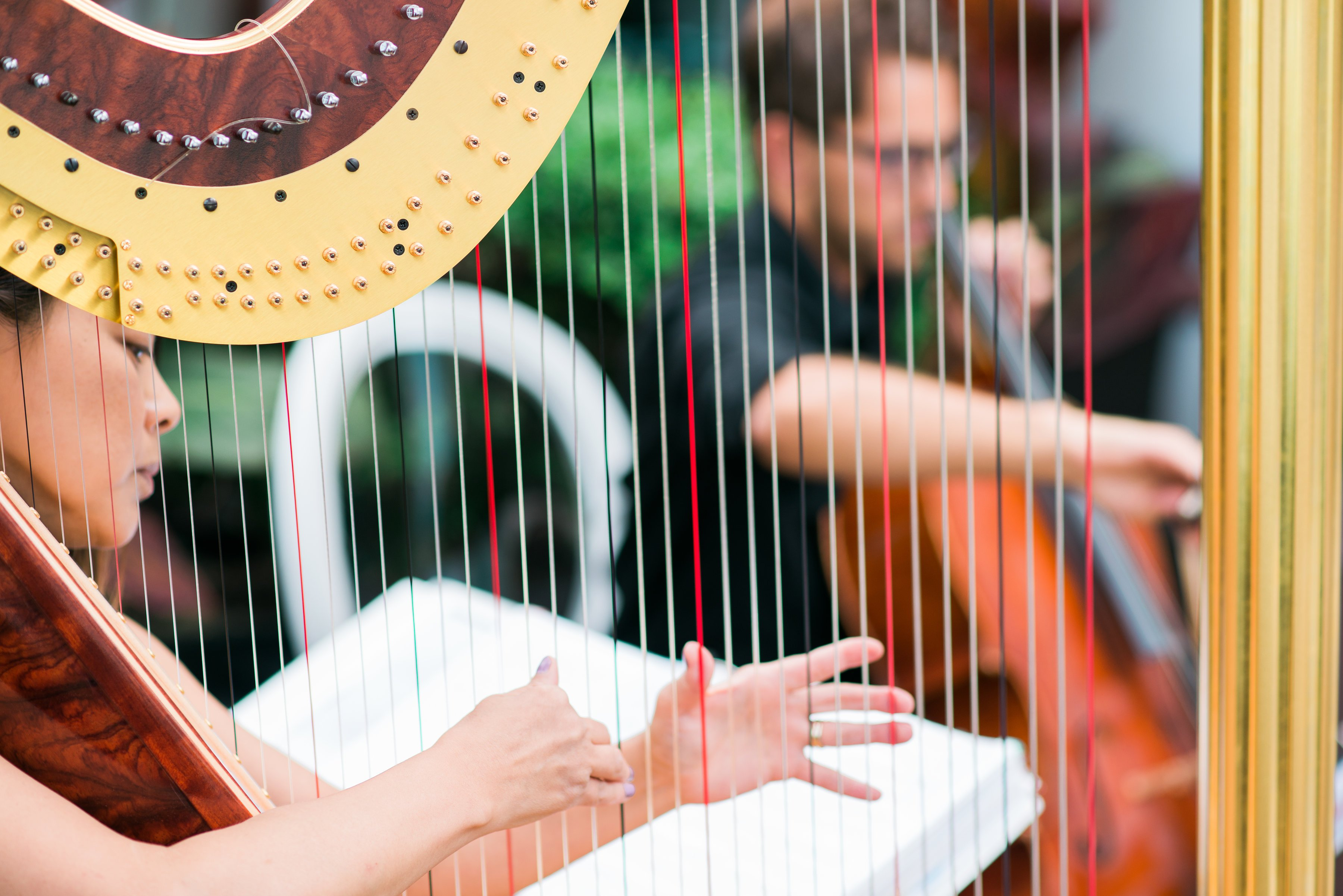 Classical & Wedding Music in Vancouver: Musical Occasions